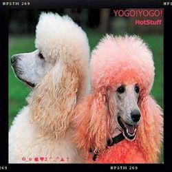YOGO!YOGO! - ''HotStuff''